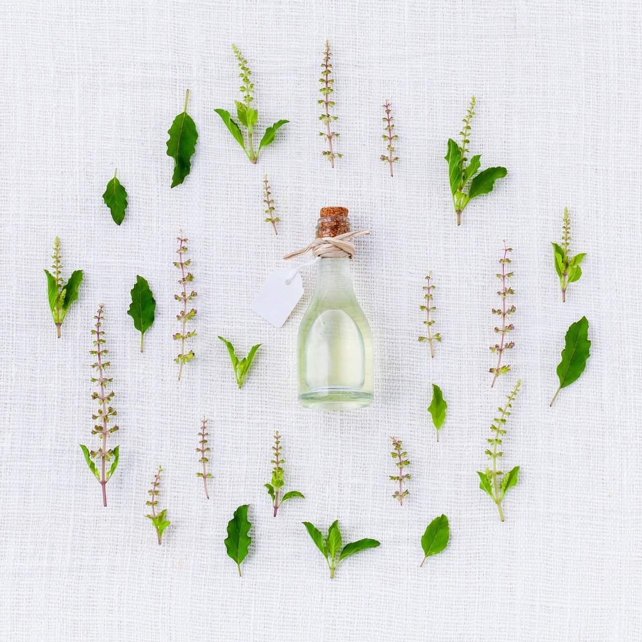 aroma, basil, spices