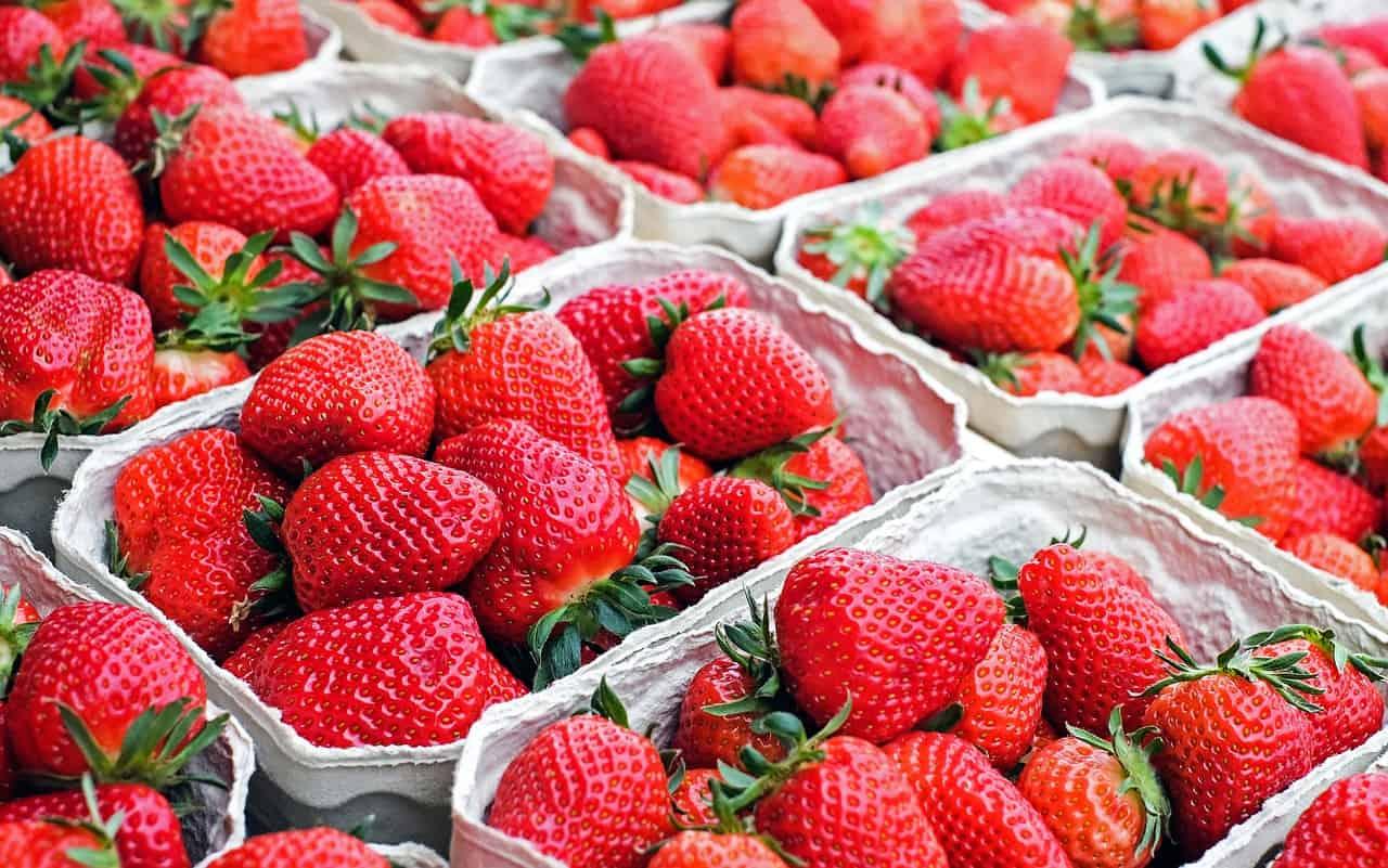 strawberries, fruit, red